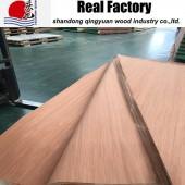 科隆科技木皮胶合板贴面专用