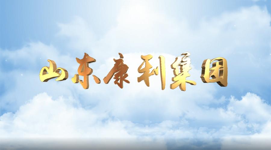 山东康利集团